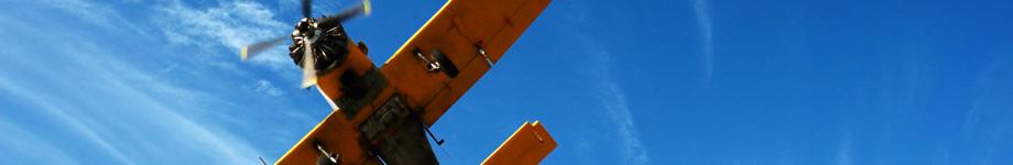Cargotown Rotating Header Image